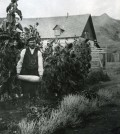 Frank Beatton at his garden in the Old Fort. File photo