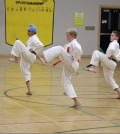 Three Shotokan students during the Shotokan tournament.  Photo: Theresa Parker