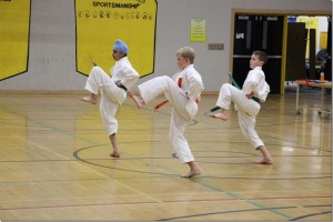 Three Shotokan students during the Shotokan tournament.  Photo: Theresa Parker