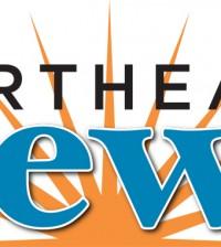 NEN 2013 Logo clr